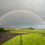 A Rainbow at Bunratty Meadows